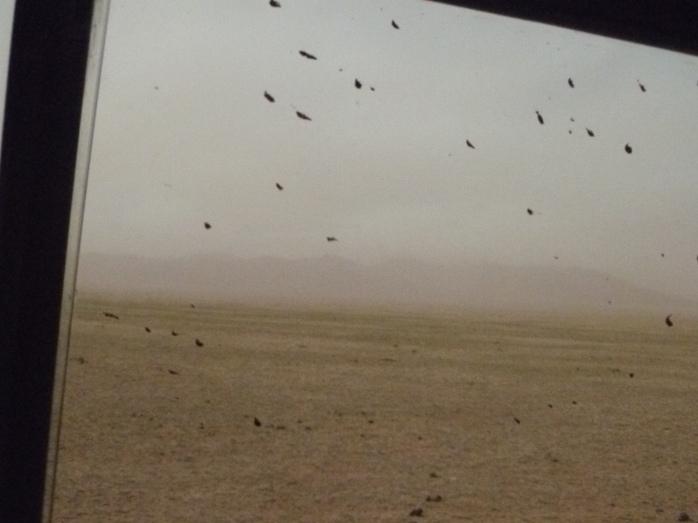 Mongolia-HustaïTempête