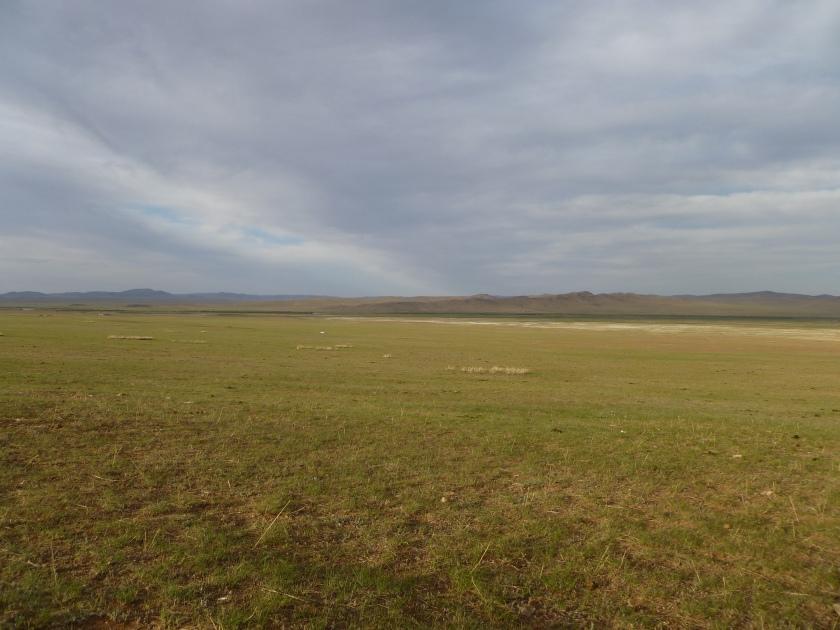 Mongolia_ChezTumuruu-steppe