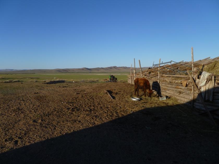 Mongolia_ChezTumuruu