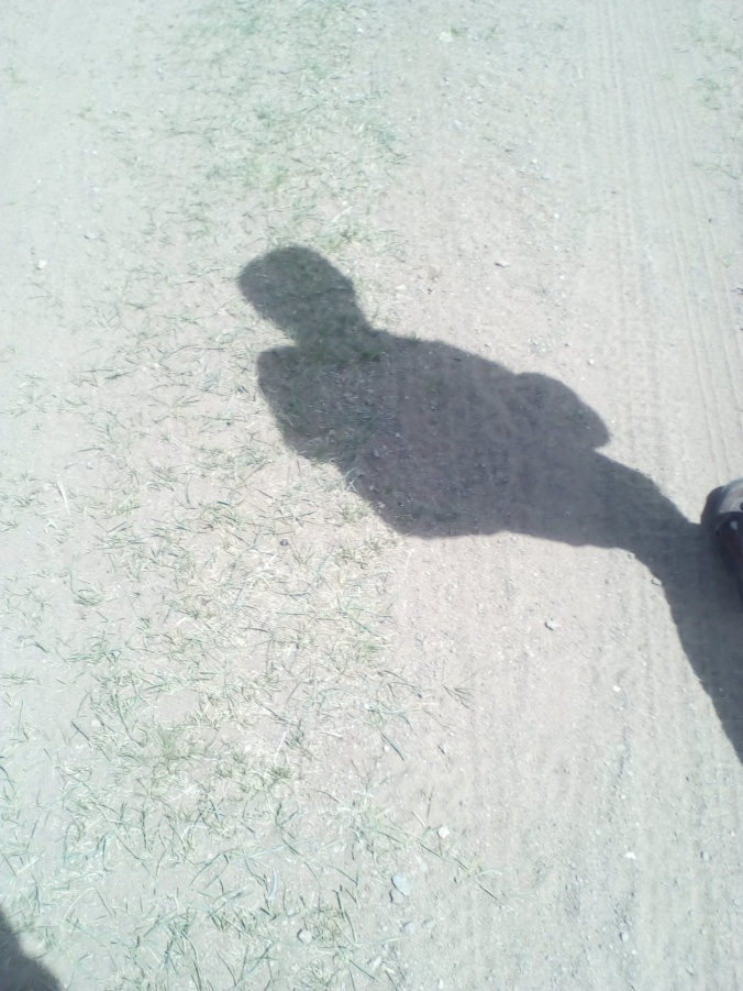 shadowsteppes